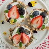 Mixed Berries Granola Yoghurt Tart